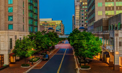 tree-lined street with office buildings in Reston Virginia
