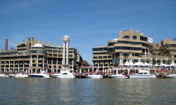 Georgetown waterfront with boats and commercial buildings